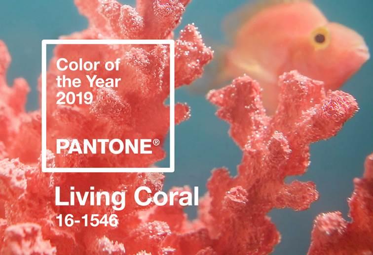 http://www.newspedrali.it/Lanci_stampa/0105_PANTONE/ITA/Living%20Coral_file/image002.jpg